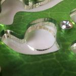 Модуль увлажнения внутри муравьиной фермы