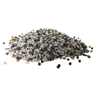 Запас зернового корма для муравьёв